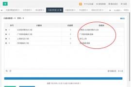 seo实战干货:优化长尾关键词的几个技巧