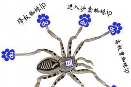 seo必备基础知识之百度蜘蛛IP段大全